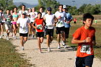 Coyote Chase 2008